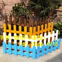 江西上饶PVC草坪护栏花园围栏栅栏供应商图片
