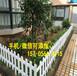 山丹縣PVC塑鋼護欄戶外園林花園籬笆