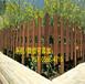 信州區PVC庭院護欄pvc庭院圍欄