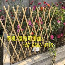 南昌青云谱篱笆塑钢绿化带栏杆哪家买图片