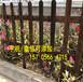 晋江市阳台围栏栅栏竹围墙竹排帘