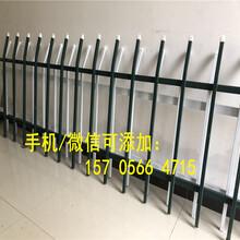 江苏常州金坛PVC塑钢护栏户外花园围栏庭院花坛栏杆护栏图片报价图片