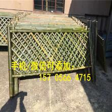 株洲株洲PVC塑钢加厚实心护栏围墙园艺草坪护栏价格产量高图片
