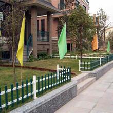 宁波市pvc草坪栅栏pvc草坪栏杆门市价图片