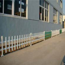 颍泉区小区栏杆绿化护栏价格产量高图片