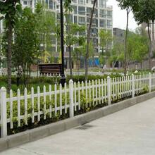 太原市pvc绿化栅栏pvc绿化栏杆哪家买图片