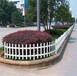 贛州市籬笆欄戶外室外庭院別墅草坪欄桿鐵柵欄