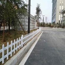 梁园区pvc塑钢护栏围栏栅栏花栏效率高的图片