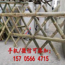 文成县草坪护栏草坪护栏资讯图片
