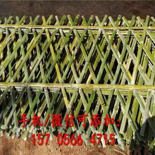 衢州市塑钢护栏绿化栅栏草坪护栏批发价图片
