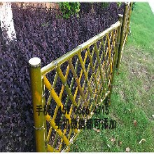 攀枝花绿化栏杆草坪护栏篱笆栅栏全国发货,欢迎下单图片