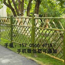 瓯海区竹篱笆护栏毛竹围栏推荐图片