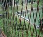 信州区pvc栅栏pvc栏杆