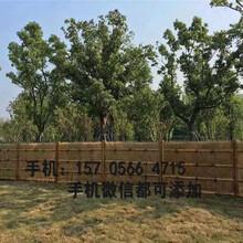 石家庄桥西区伸缩木拉网围栏草坪护栏花坛绿化栅栏都有现货的图片