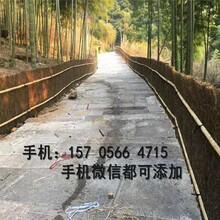 岳阳平江县竹篱笆围栏竹护栏全国发货,欢迎下单图片