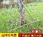 萍鄉市工程上海市政道路工地擋板隔離塑料圍墻