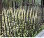 平湖市工程上海市政道路工地擋板隔離塑料圍墻