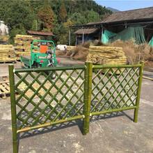 瓯海区pvc护栏绿色护栏绿化带护栏市场走向图片