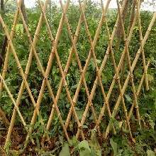 沁县pvc草坪栅栏pvc草坪栏杆资讯图片