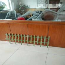 明溪县pvc塑钢栅栏pvc塑钢栏杆图片