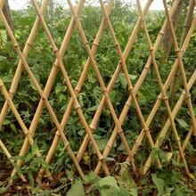 吉安县pvc塑钢护栏花坛草坪护栏哪家买图片
