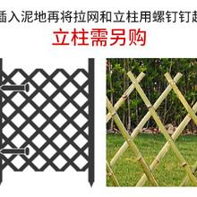 邢台清河县塑钢护栏花坛栏杆竹篱笆哪家好图片