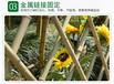 磐安县碳化防腐木栅栏围栏围墙护栏