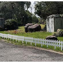 西固区钢防护园林绿化隔离栏户外新品图片