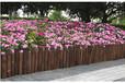 瓜州县PVC塑钢护栏户外园林花园篱笆