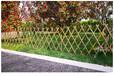 平湖市pvc幼兒園柵欄pvc幼兒園欄桿