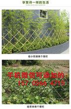 吕梁离石围栏栅栏绿化围栏厂家价格