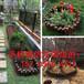 江干區籬笆欄戶外室外庭院別墅草坪欄桿鐵柵欄