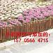 江陰市鋁藝庭院護欄鋁合金戶外別墅欄桿