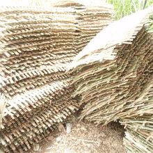 湖北襄阳pvc栏杆栅栏围栏厂厂家供应图片