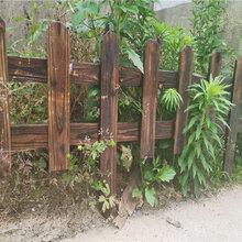 安徽安庆pvc幼儿园栏杆公司图片