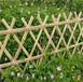 惠安县庭院护栏花园竹子竿竹拉网竹片围墙