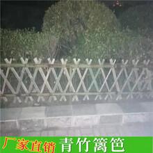 北塘竹篱笆pvc护栏护栏草坪(中闻资讯)图片