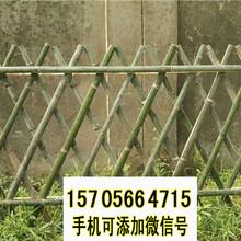 鄞州区竹篱笆篱笆墙草坪护栏栅栏塑钢护栏百度更多图片