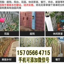 寻乌竹篱笆竹笆竹子隔断竹子护栏价格定制定做图片