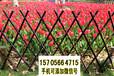 三明大田县竹栅栏竹护栏草坪护栏栅栏户外(中闻资讯)