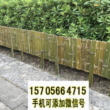 增城竹篱笆篱笆墙绿化护栏竹子护栏当天发货图片