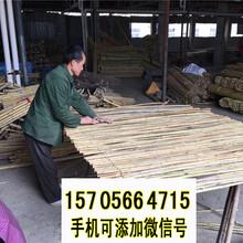 滕州竹篱笆竹拉网栅栏碳化伸缩栅栏竹子护栏全国供应图片