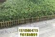 漳州平和县竹篱笆pvc护栏绿化栏杆给力促销(中闻资讯)