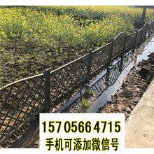 陵县竹篱笆防腐竹篱笆插地围栏竹子护栏厂优游电话图片