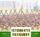 竹篱笆竹护栏围墙护栏竹栅栏围栏竹护栏竹栅栏价格优惠