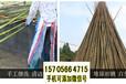 宁德周宁县竹篱笆pvc护栏碳化防腐工厂直销(中闻资讯)
