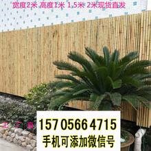 韶关新丰竹篱笆防腐竹围栏塑钢护栏pvc护栏竹园艺图片