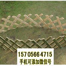 廊坊固安竹篱笆草坪护栏竹护栏pvc护栏欢迎前来咨询图片