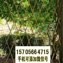 闽侯竹篱笆防腐木篱笆墙竹子护栏厂家图片