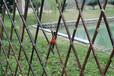 紹興新昌縣竹籬笆pvc護欄室外竹籬笆庭_免費提供樣品(中聞資訊)